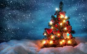 christmas-tree-picture